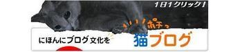 Kiruko_banner6