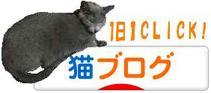 Kiruko_banner4_4