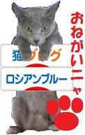Kiruko_banner8_11
