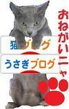 Kiruko_banner001_4